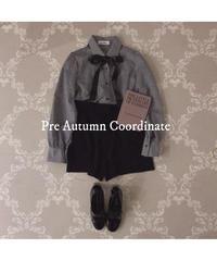 Pre autumn coordinate set ver.2
