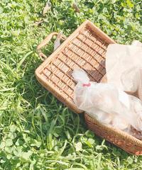 picnic bag (S19-08014K)