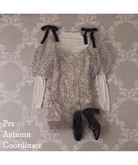 Pre autumn coordinate set ver.3