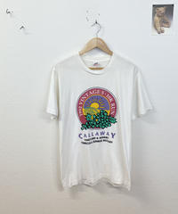 朝日を見に行くTシャツ3619