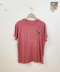ずっと見つめてくるTシャツ3613