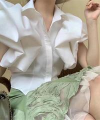 Volume ruffle sleeve blouse