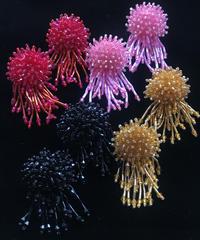 【Selected item】Jellyfish Beads Pierce