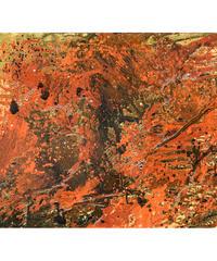 El Mar del Marte / 火星の海  by JUAN-PINO BOSQUES