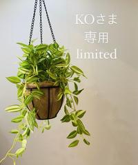 KOさま専用ページ