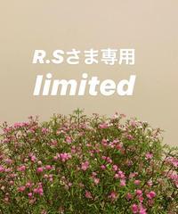 R.Sさま専用リミテッド