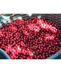 完熟フルーツの重層的な甘みのブレンド(フルシティロースト・深煎り)100g