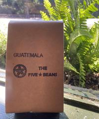 グアテマラ  エル リモナール農園 ビジャサルチ種 ウォッシュ