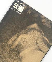 Title/ ドキュメント公園  Author/ 吉行耕平