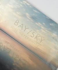 Title/ Bay / Sky      Author/ Joel Meyerowitz