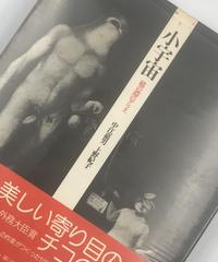 Title/ 小宇宙 鏡の淵のアリス  Author/ 中江嘉男   上野紀子