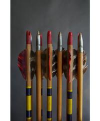 09-MT344372 Arrow wood set of 12 w/box