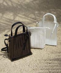 Pleats Clear Bag