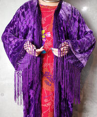 Purple Arabesque Velvet Fringe Gown