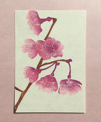Post Card_ さくら         【 Hand Print card_ Sakura 】