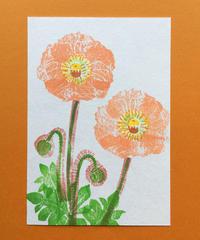 Post Card_ ポピー1         【 Hand Print card_ poppy01 】