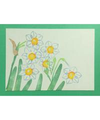 Post Card_ 水仙          【 Hand Print card_daffodil 】