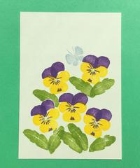 Post Card_ ビオラ(黄)       【 Hand Print card_ viola_violet 】