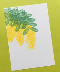 Post Card_ ミモザ         【 Hand Print card_ mimosa 】
