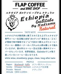[100g]エチオピア ガルテンビ ハブタム ナチュラル Ehiopia Galtebe by Hadtamu Natural