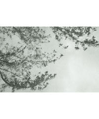 """""""Monochrome"""" Photo Frame(L size)"""