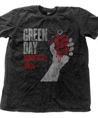 GREEN DAY: american idiot vintage with snow wash finishing (ユニセックス バンドTシャツ) 【HV00-T04-01-S~XL】
