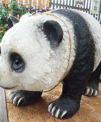 大パンダA