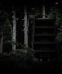 3名様限定神社仏閣写真教室〜室生寺編〜2020/06/21