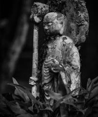 3名様限定神社仏閣写真教室〜京都編〜2020/04/03