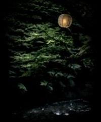 3名様限定神社仏閣写真教室〜京都編〜2020/07/19