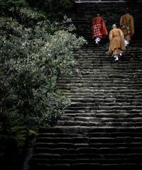3名様限定神社仏閣写真教室〜室生寺編〜2021/06/21