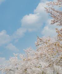 5名様限定神社仏閣写真教室〜鎌倉編〜2020/04/13