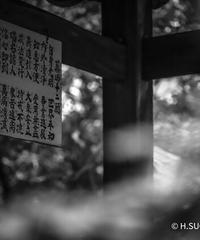 2名様限定神社仏閣写真教室〜四国巡礼編〜2020/12/13〜17
