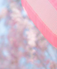 5名様限定神社仏閣写真教室〜青森下北編〜2020/05/08〜10