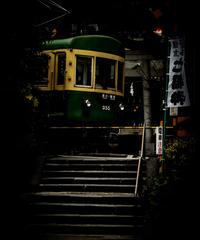 5名様限定神社仏閣写真散歩〜鎌倉編〜2020/02/18