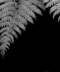 3名様限定神社仏閣写真教室〜熊野古道編〜2020/09/29〜10/01