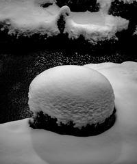5名様限定神社仏閣写真散歩〜京都編〜2020/02/02