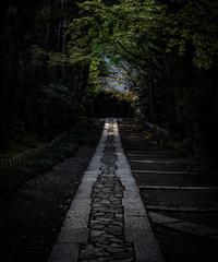 5名様限定神社仏閣写真教室〜鎌倉編〜2020/05/05