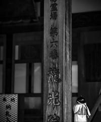 3名様限定神社仏閣写真教室〜四国巡礼編〜2020/09/10〜12