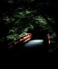 3名様限定神社仏閣写真教室〜京都編〜2020/07/18