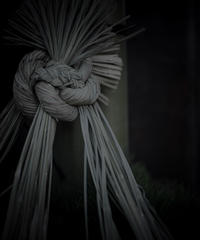 5名様限定新春神社仏閣写真散歩〜鎌倉編〜2020/01/04