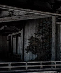 2名様限定神社仏閣写真教室〜中尊寺〜瑞巌寺編〜2020/10/31〜11/02