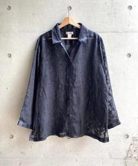 see-through  shirt
