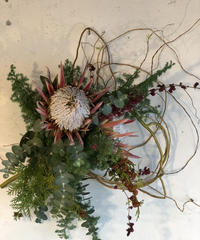 プロテアのクリスマス枝みせリース