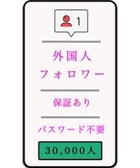 (プライベートアカウント対応)フォロワー30000人増加★購入後30日保証