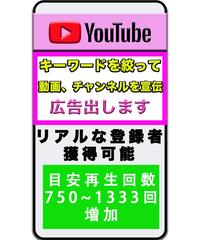 Youtube上の目立つ場所に広告掲載 予算:5000円