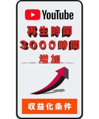 Youtube再生時間+3000時間(全公開動画合計で20分以上で可能)