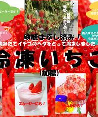 【送料無料】完熟 冷凍イチゴ2キロ(加糖、加糖なし選択)