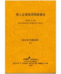 個人企業経済調査報告書 2019年(令和元年) [978-4-8223-4112-1]-01