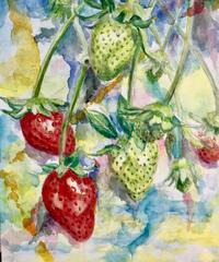 "水彩画  『苺』""strawberry"""